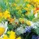 Утре е един от най-големите летни празници - 7 именици празнуват, мощни ритуали се правят