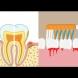 Венците ми кървяха безобразно, чак дъхът ми се беше променил. Добре че зъболекарят ми каза какво да правя в къщи!