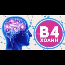 Алцхаймерът отива в отпуск. 5 вещества, които са жизненоважни за мозъка ви