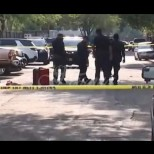 12-годишно момиче зад волана уби мъж и кучето му