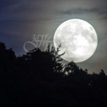 Кармична Черна Луна ДНЕС: Мощно СЪДБОВНО време, през което Вселената щедро разпределя на хората
