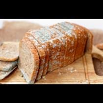 Вредно ли е да ядем плесенясал хляб? Ето цялата истина и какво може да ни се случи: