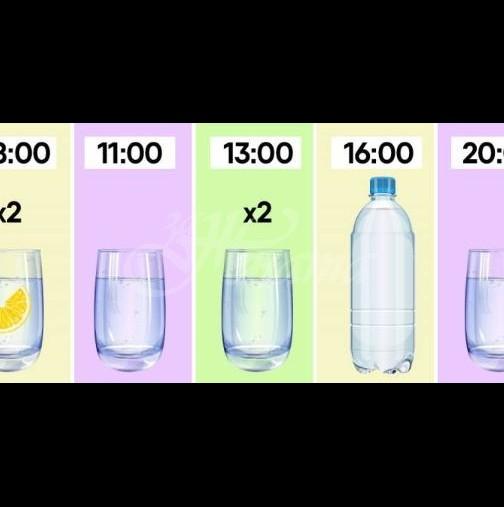 За ускоряване на метаболизма и бързо отслабване спазвам следния график за пиене на водапиене
