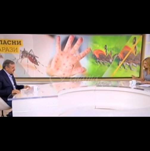 Случаи на западнонилска треска има вече и в България-Ето симптомите и как да се предпазим