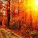 Месечен хороскоп за септември-Рак ще имат успехи, Стрелец-щедър месец, Козирог-щастие