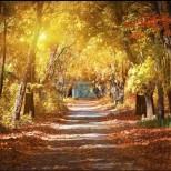 Дневен хороскоп за сряда, 18 септември-РИБИ  Успешно реализирани цели, ВОДОЛЕЙ Хубави постижения
