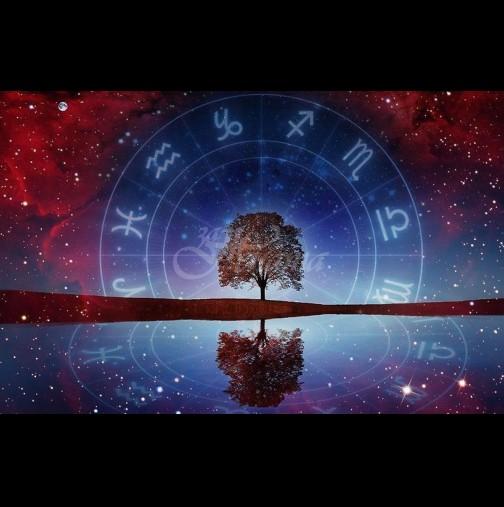 Астро прогноза за 2020 година: 3 знака ще почерпят богатство и любов с пълни шепи