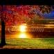 Хороскоп за утре 20 септември-РИБИ Шанс за сполука, ДЕВА Силен шанс