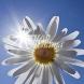Слънчев календар за утре-Знаците за щастие и късмет, а всичко, което произнесете на глас, може да се сбъдне,