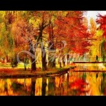 Хороскоп за октомври 2019-3 зодии ще усетят щастието в цялата прелест на есента