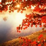 Хороскоп за днес 4 октомври-Хубави изненади днес за една зодия