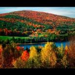 Хороскоп за днес, 5 октомври: ТЕЛЕЦ - промени и лишения, ЛЪВ - силен шанс за успех, ВЕЗНИ - разногласия