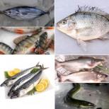 Черен списък на 8 вида риба, от които е по-добре да откажете, заради високи нива на живак