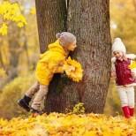 Хороскоп за днес 13 октомври-Приятна изненада за две зодии, подходящ за покупки