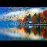 Хороскоп за утре, 11 октомври-РИБИ Изразителни възможности, ВЕЗНИ Чакате печалби, ДЕВА Шанс за успех