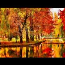 Хороскоп за утре 24 октомври-РИБИ Значителен успех, ВОДОЛЕЙ Постигане  на цели