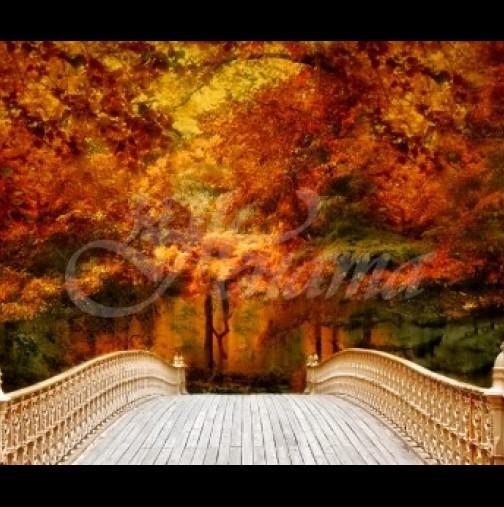 Хороскоп за днес, 7 октомври-Интуицията си днес трябва да слушат две зодии
