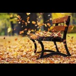 Хороскоп за утре, 27 октомври: ДЕВА - ярка сполука, СКОРПИОН - лошо настроение, КОЗИРОГ - успешни контакти