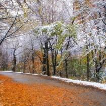 Дежурният синоптик даде прогноза за времето през ноември по десетдневки-Ето какво ни очаква!