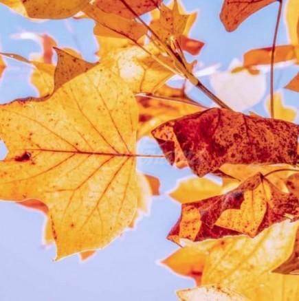 Актуалната седмична прогноза за времето е отново изненада