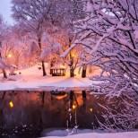 Хороскоп за утре 16 декември-ВОДОЛЕЙ Финансов успех, ВЕЗНИ Изразителен напредък