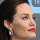 Майката на Анджелина Джоли направо я засенчи по красота. Ето на кой се е метнала прелестницата (снимки)