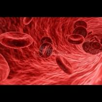 Ето я най-опасната кръвна група - хората с нея са абонирани за куп болести, сред които рак и инсулт: