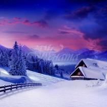 Хороскоп за утре, 4 декември-ВОДОЛЕЙ Благодатни контакти, ТЕЛЕЦ Успех чрез съдружие