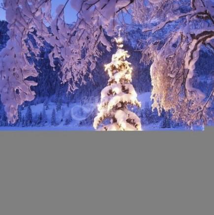 Седмичен хороскоп за периода от 16 до 22 декември-ВЕЗНИ Надеждни възможности, ОВЕН Делови успехи