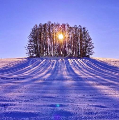 Хороскоп за утре 11 декември-РИБИ Ще получите подкрепа, СКОРПИОН Не проваляйте възможностите си