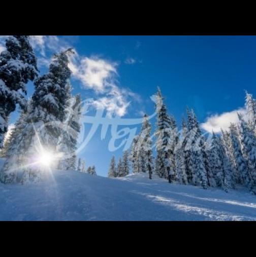 Хороскоп за утре 9 декември-СТРЕЛЕЦ Добър късмет, СКОРПИОН Успех и надеждност