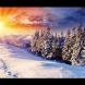 Хороскоп за утре, 5 декември-ВОДОЛЕЙ Успехът е с вас, СКОРПИОН Ярък успех