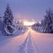 Хороскоп за утре 10 декември-ВОДОЛЕЙ Хубави  възможности, ВЕЗНИ Материална сполука, ЛЪВ Сполучлива реализация