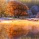 Хороскоп за утре, 21 ноември-ОВЕН Късмет и печалби, СТРЕЛЕЦ Изразителен късмет, КОЗИРОГ Чудесни възможности