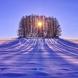 Седмичен хороскоп за периода от 9 до 15 декември-БЛИЗНАЦИ  Партньорски подозрения
