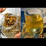 10 доказани причини защо трябва да пием чай от лайка