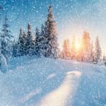 Месечен хороскоп за януари 2020-Изключителни финансови възможности и постъпления за три зодии и отлични перспективи за две