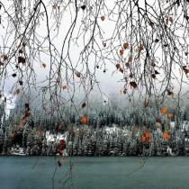 Синоптиците смразиха с прогнозата: зимата настъпва с мощна сила в 8 области е обявен опасен код!