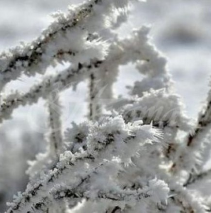 Сериозен студ лъха от месечната прогноза за времето за януари