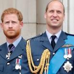 Хари и Уилям изпълнили думите на принцеса Даяна отпреди 24 години