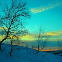 Месечен хороскоп за февруари-Ако сте Рак-Неочаквана поява в живота ви на нов човек, ако сте Лъв-Неочакван шанс