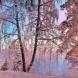 Хороскоп за утре 23 януари-СТРЕЛЕЦ Пред нов, хубав, плодотворен цикъл, БЛИЗНАЦИ Добри възможности
