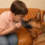 Кучета започнаха да се държат странно със стопанката си и ѝ спасиха живота