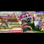 Това трябва да е Раят на земята! Градината на чудесата - цветен разкош насред пустинята (Снимки):