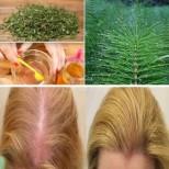 Най-доброто природно средство за укрепване и растеж на косата