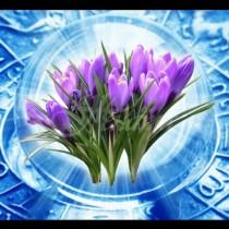 ТОП Хороскоп за днес, 22 февруари: Висшите сили ще изпълняват желанията на три знака на зодиака!