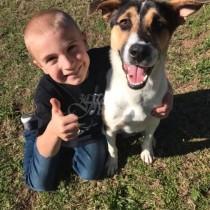"""На 7-годишна възраст той вече успя да спаси повече от 1300 бездомни кучета и да стане """"дете на годината"""""""