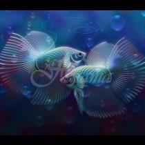 Новолуние в Риби-Ето какво ни предвещава това събитие