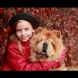 По нелеп начин почина най-красивото момиченце на света