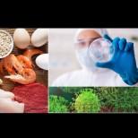 Увеличете приема на селен срещу коронавирус - ето какво съветват лекар интернист и фармакотерапевт